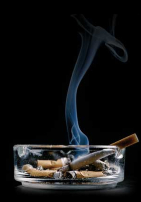 Who Smoking Cigrates Mobile Wallpaper