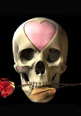 Rose Skull Mobile Wallpaper