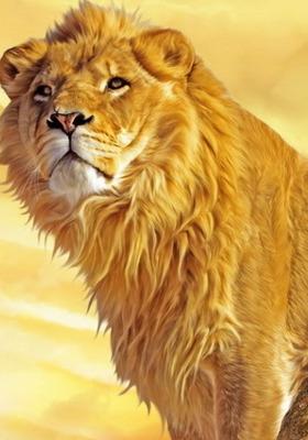 Lion Animal Mobile Wallpaper