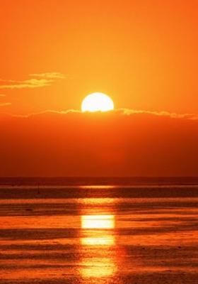Nice Sun  Mobile Wallpaper