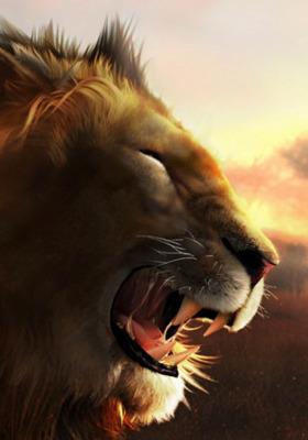 Lion Mobile Wallpaper