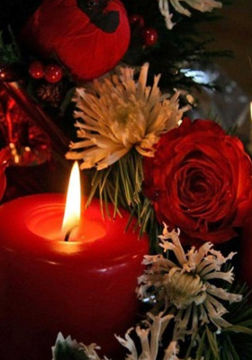Candle Flower Mobile Wallpaper