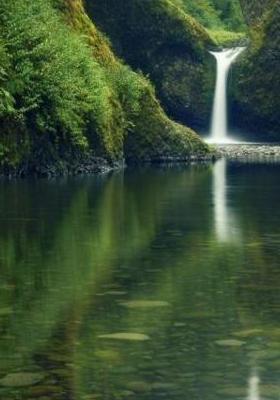 Water Falls Mobile Wallpaper
