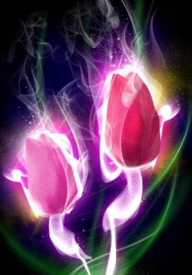 Lighting Flower  Mobile Wallpaper
