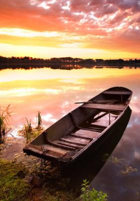 Boat On Shore Mobile Wallpaper