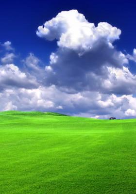 Green Grass IPhone Wallpaper Mobile Wallpaper