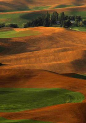 Land View Mobile Wallpaper