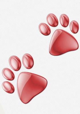 Footsteps Mobile Wallpaper