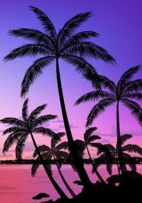 Hawaiin Sunseta Mobile Wallpaper