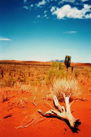 Desert Landscape IPhone Wallpaper Mobile Wallpaper