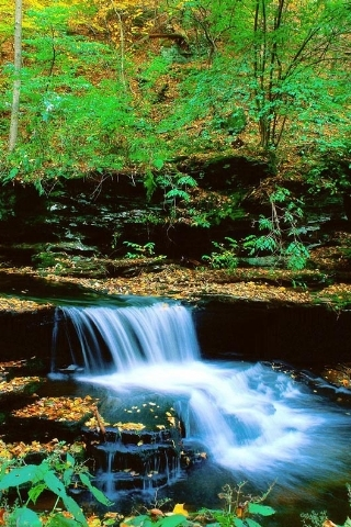 Mini Waterfalls Mobile Wallpaper