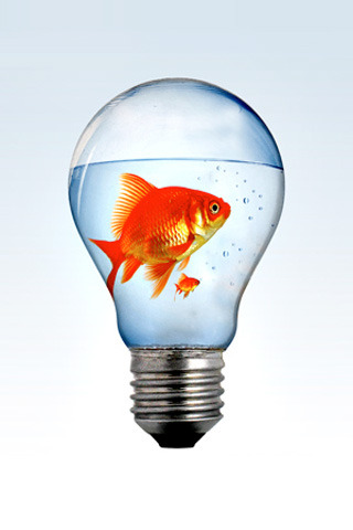 Fish Inside Bulb Mobile Wallpaper