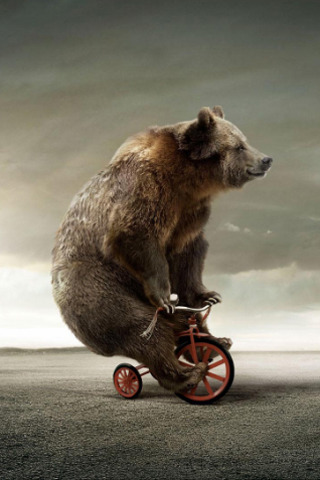 Circus Bear On Tricycle IPhone Wallpaper Mobile Wallpaper