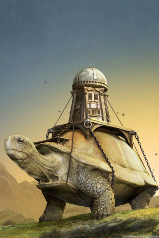 3D Over Turtle IPhone Wallpaper Mobile Wallpaper