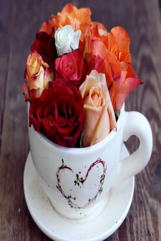 Cup Of Love IPhone Wallpaper Mobile Wallpaper