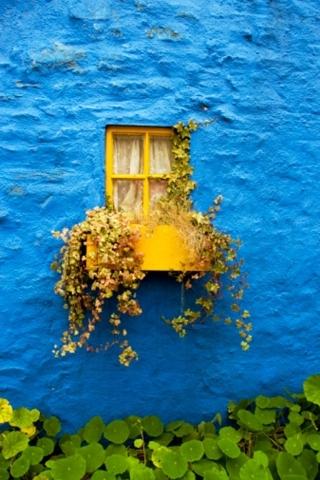 Blue Window IPhone Wallpaper Mobile Wallpaper