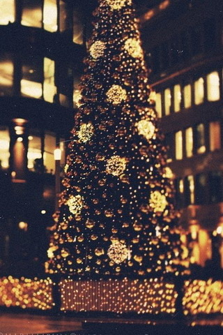 Christmas Tree Lights IPhone Wallpaper Mobile Wallpaper