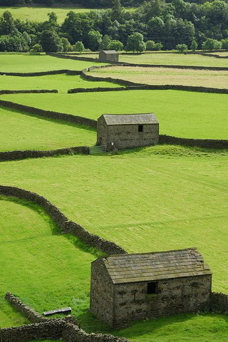 Stone Fences And Barns Ireland Mobile Wallpaper