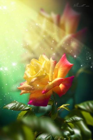 Flower Lights Effect IPhone Wallpaper Mobile Wallpaper