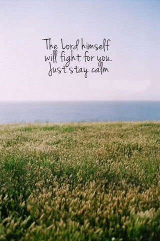 Just Stay Calm IPhone Wallpaper Mobile Wallpaper