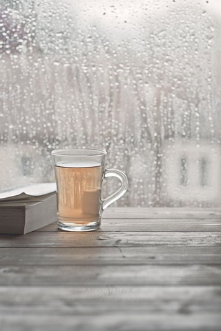 Hot Tea & Book IPhone Wallpaper Mobile Wallpaper