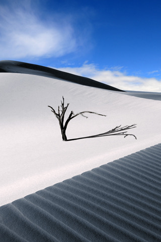 Sand Dune IPhone Wallpaper Mobile Wallpaper