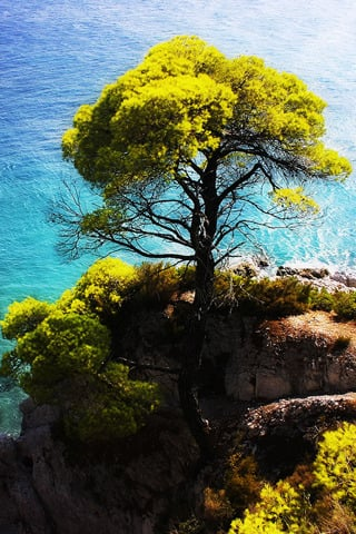 Skopelos Island IPhone Wallpaper Mobile Wallpaper