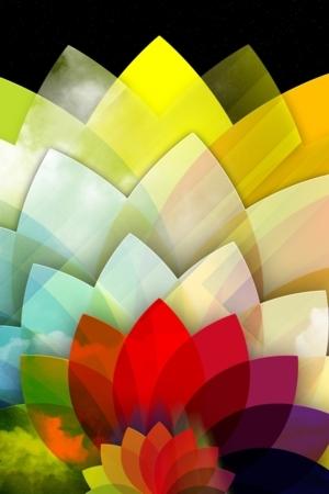 3D Sky Flower IPhone Wallpaper Mobile Wallpaper