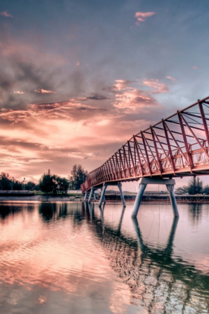 Metal Bridge Pink IPhone Wallpaper Mobile Wallpaper