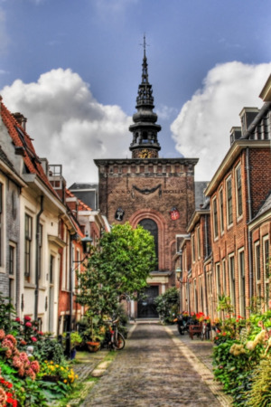 Street In Holland IPhone Wallpaper Mobile Wallpaper