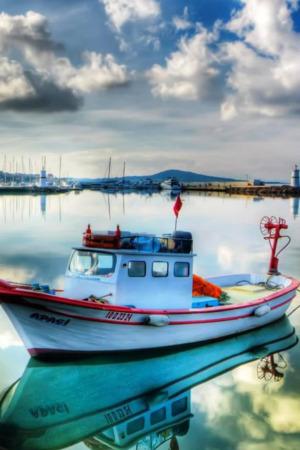 Boats On Marina IPhone Wallpaper Mobile Wallpaper