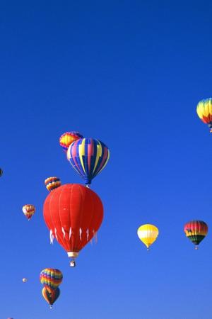 Beautiful Balloon Fiesta IPhone Wallpaper Mobile Wallpaper
