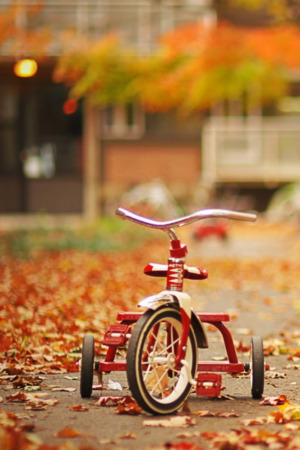 Tricycle On Road Road IPhone Wallpaper Mobile Wallpaper