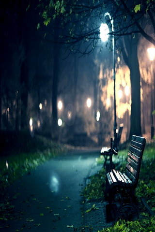 Lovely Night Darden & Raining IPhone Wallpaper Mobile Wallpaper
