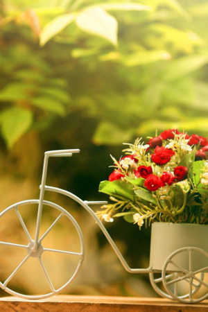 Bicycle Flowers Nice IPhone Wallpaper Mobile Wallpaper