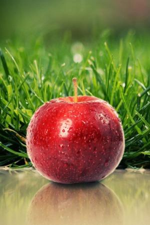 Cris Apple & Green Grass IPhone Wallpaper Mobile Wallpaper