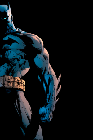 Batman Freedom Fighter IPhone Wallpaper Mobile Wallpaper