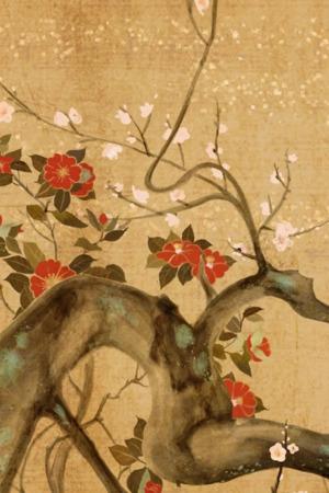 Cherry Tree 3D Flowers IPhone Wallpaper Mobile Wallpaper