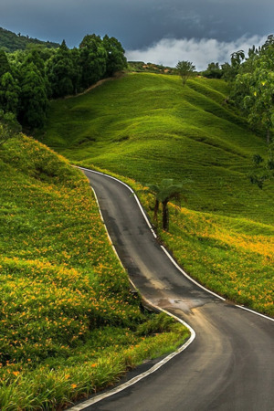 Road Trip Green Lovely IPhone Wallpaper Mobile Wallpaper
