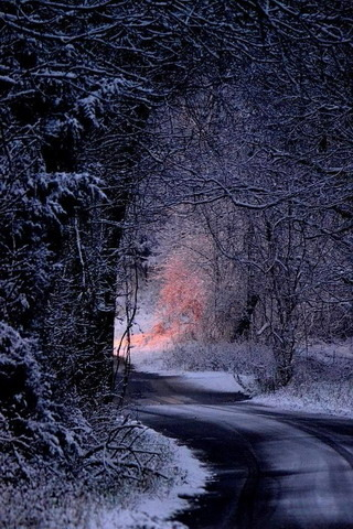 Winter Snow Night Road IPhone Wallpaper Mobile Wallpaper