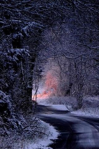 Download Winter Snow Night Road Iphone Wallpaper Mobile Wallpaper