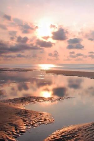 Sunset Evening & Rays IPhone Wallpaper Mobile Wallpaper