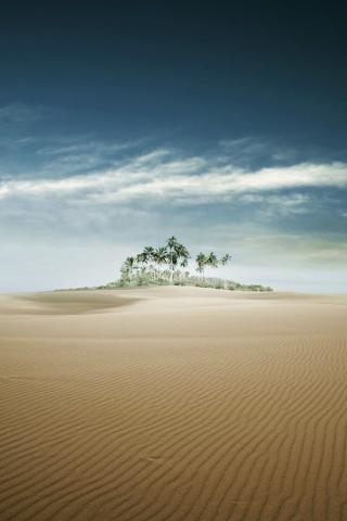 Sand Oasis IPhone Wallpaper Mobile Wallpaper