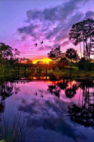 Purple Sky & Sunset Mobile Wallpaper
