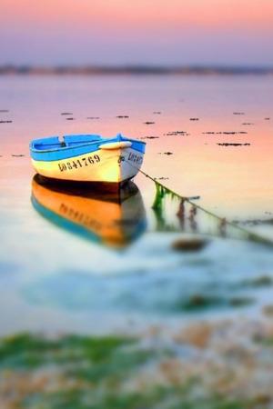 Alone Boat On Lake IPhone Wallpaper Mobile Wallpaper