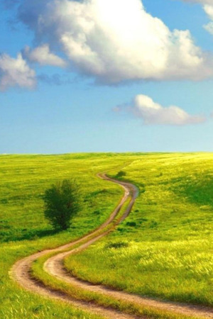 Field Road Green Nature IPhone Wallpaper Mobile Wallpaper