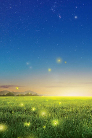 Fireflies Field Fresh Nature IPhone Wallpaper Mobile Wallpaper