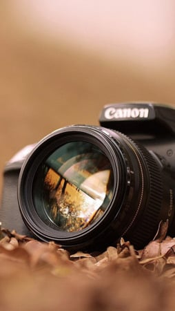Canon Camera Fall Leaves IPhone Wallpaper Mobile Wallpaper