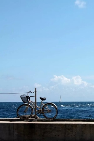 Beach Bicycle IPhone Wallpaper Mobile Wallpaper