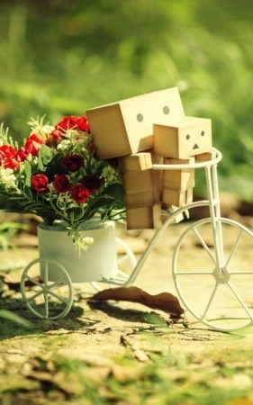 Danbo Baby On Cycle Flowers IPhone Wallpaper Mobile Wallpaper